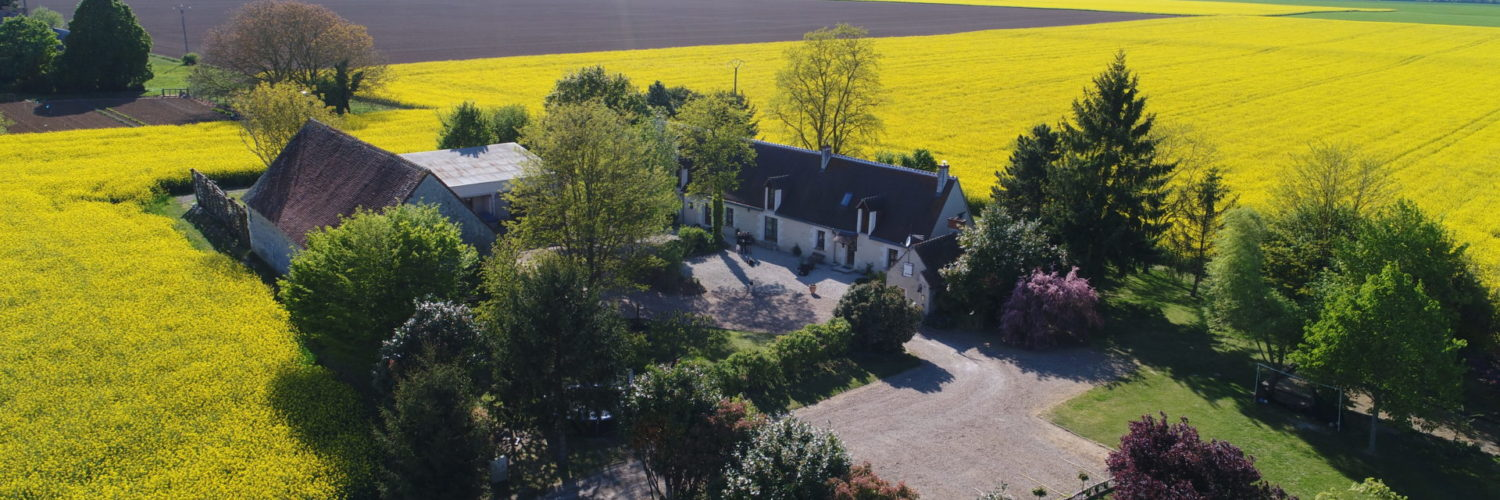 Aerial photo of La Bihourderie taken by a drone showing fields surrounding the property