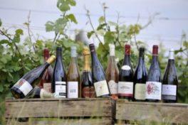 La Bihourderie bouteilles de vins de Loire